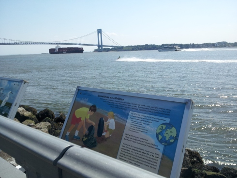 Here's a photo from my old stomping grounds in Bay Ridge, NYC. And the view from Nina's litter box. That's the Verrazanno-Narrows bridge, which connects Brooklyn to Staten Island. I am pleased that NYC officials are taking measures to clean up the waterways, as this signage indicates.