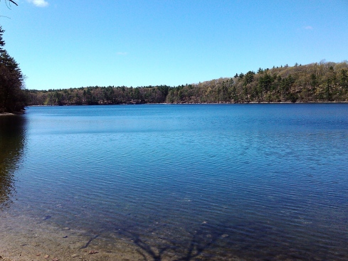 A smart phone, no matter how pricey, will never capture the beauty of Walden Pond. You must see it for yourself.